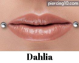 Bioflex labios disco labio pendientes Tragus vara con prensas adecuado para