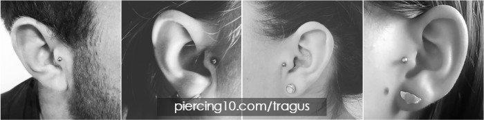 Piercing Tragus Respuestas A Todo Lo Que Quieres Saber